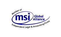 MSI - Vanhier accountants | adviseurs